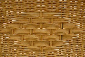 korb.outlet Rattan-Sessel Natur in der Farbe Honig/Esszimmersessel Korb-Sessel inkl. Polster Beige/Rattanmöbel Rattansessel Rattanstuhl mit Armlehnen Lounge Flechtsessel - 6